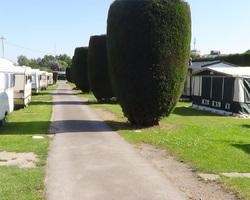 Camping de la Colme - Looberghe - Actualités